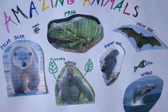 12.5. 2020 Amazing animals - 4. třída